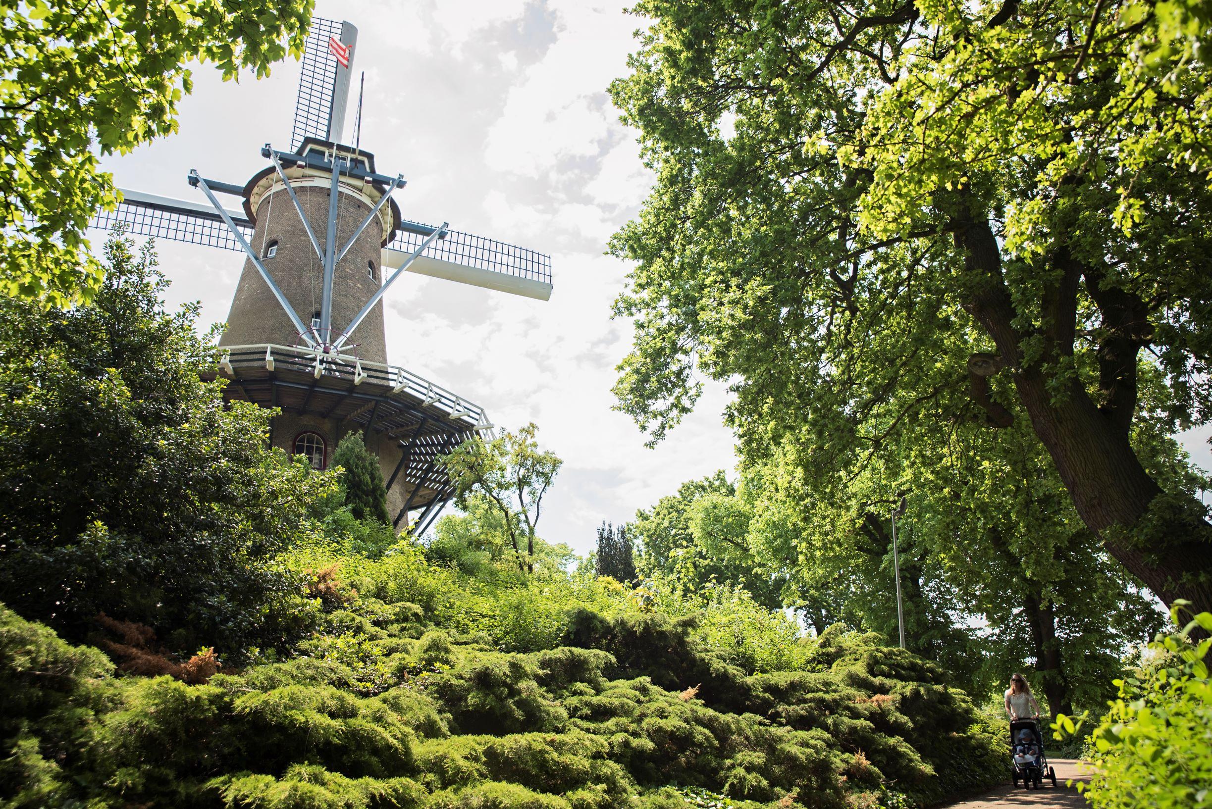 Mill Alkmaar
