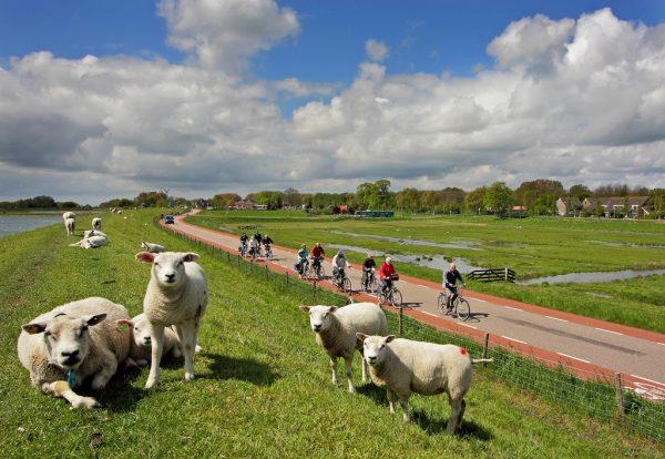 Fietsvierdaagse Hoorn
